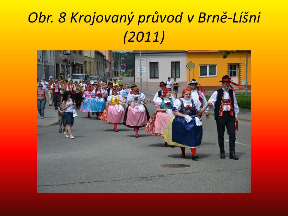 Obr. 8 Krojovaný průvod v Brně-Líšni (2011)