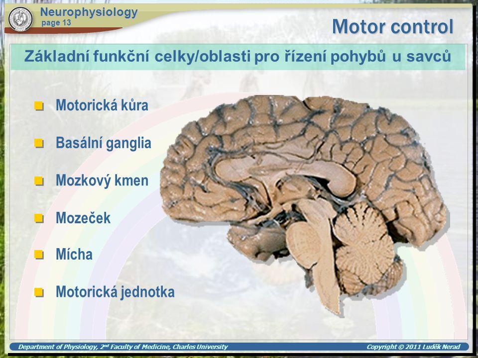 Motor control Základní funkční celky/oblasti pro řízení pohybů u savců