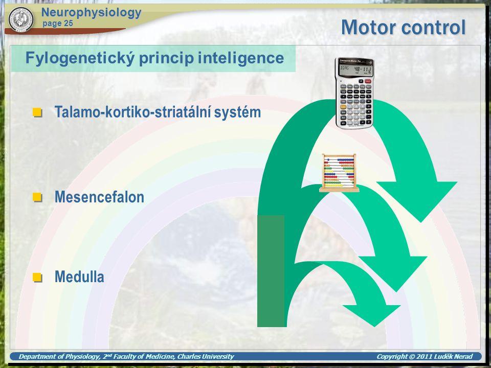 Motor control Fylogenetický princip inteligence