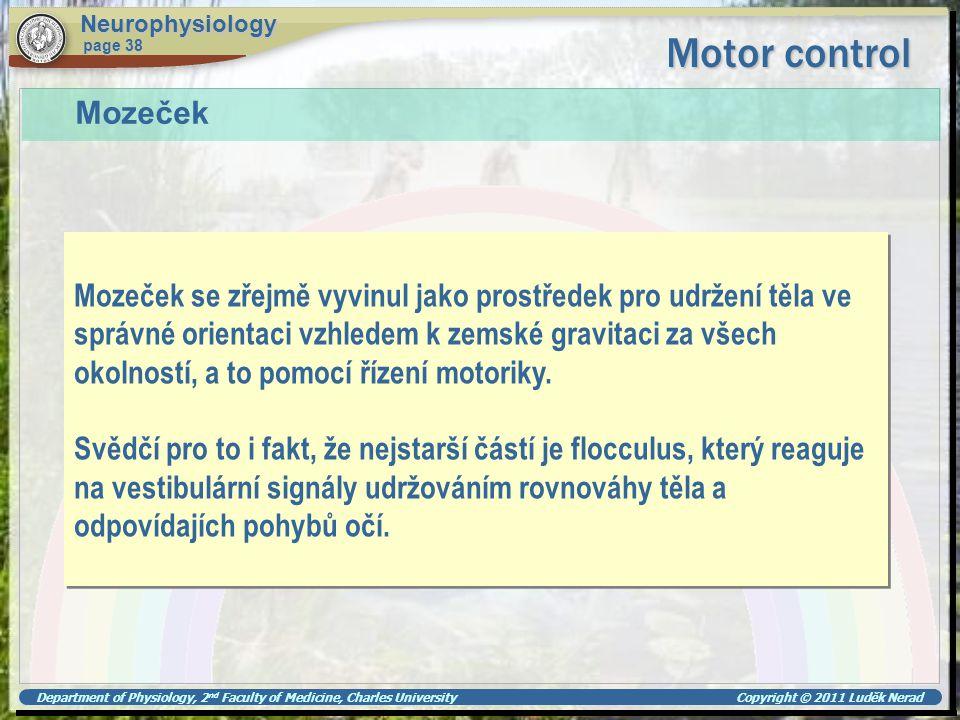 Neurophysiology Motor control. page 38. Mozeček. Mozeček se zřejmě vyvinul jako prostředek pro udržení těla ve.