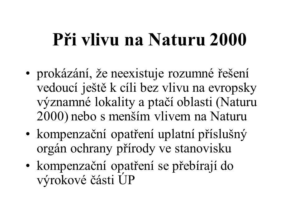 Při vlivu na Naturu 2000