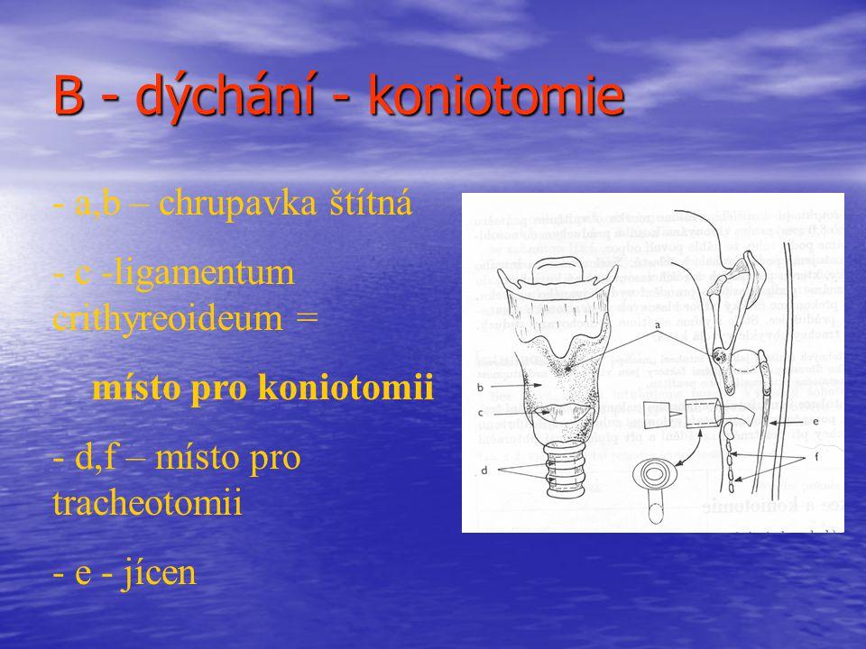 B - dýchání - koniotomie