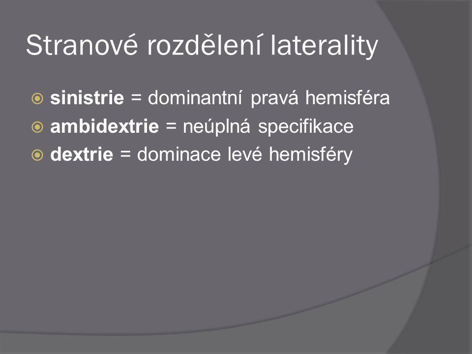 Stranové rozdělení laterality