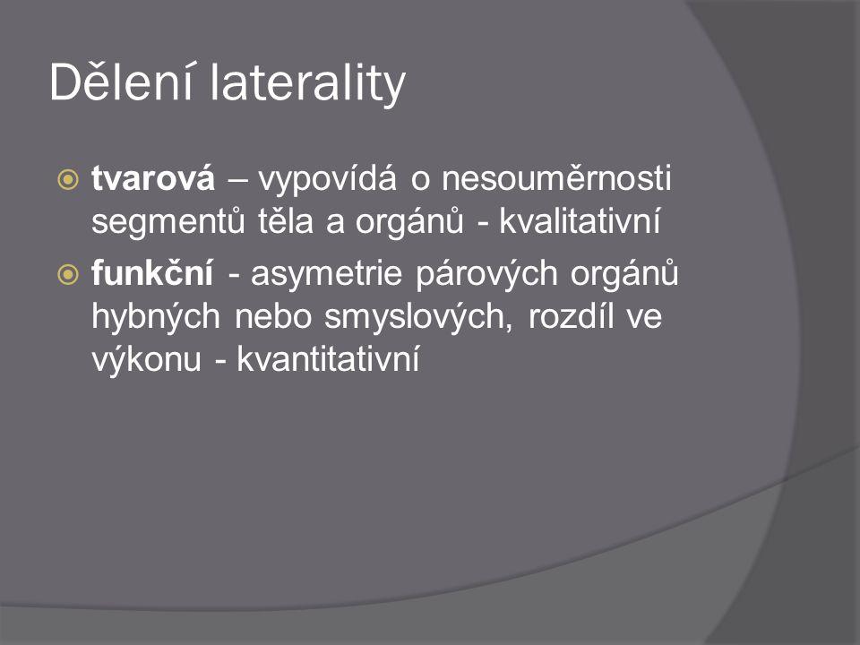 Dělení laterality tvarová – vypovídá o nesouměrnosti segmentů těla a orgánů - kvalitativní.