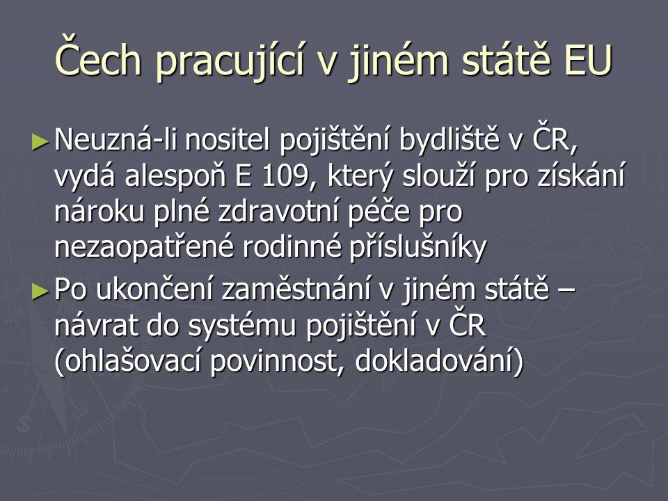 Čech pracující v jiném státě EU