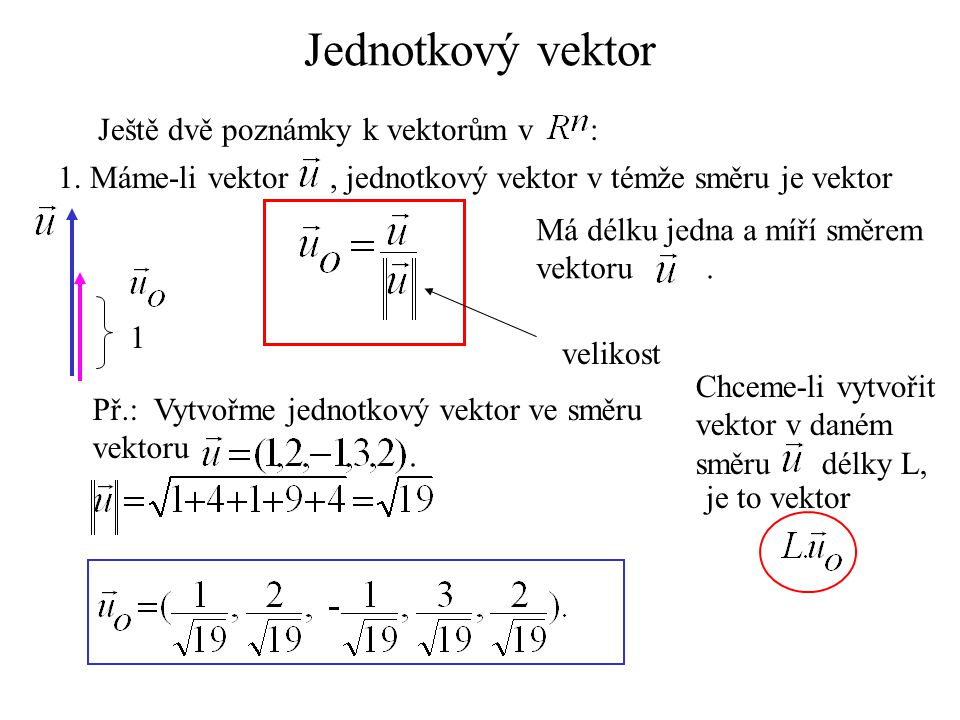 Jednotkový vektor Ještě dvě poznámky k vektorům v :