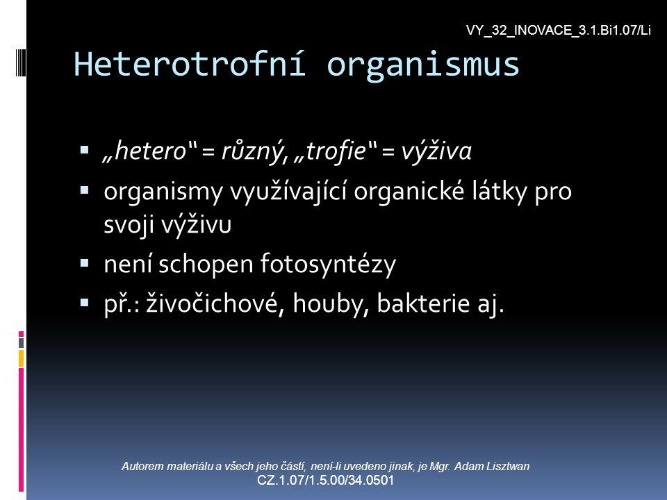 Heterotrofní organismus
