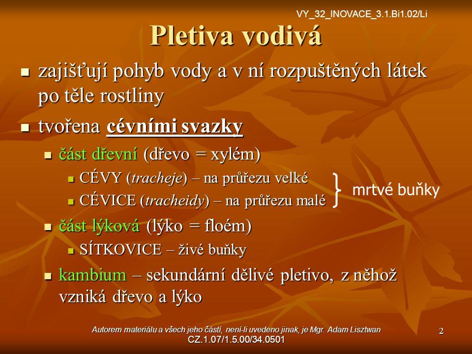 VY_32_INOVACE_3.1.Bi1.02/Li Pletiva vodivá. zajišťují pohyb vody a v ní rozpuštěných látek po těle rostliny.
