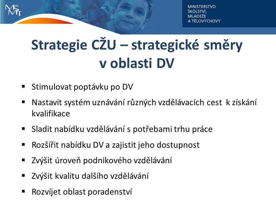 Strategie CŽU – strategické směry v oblasti DV