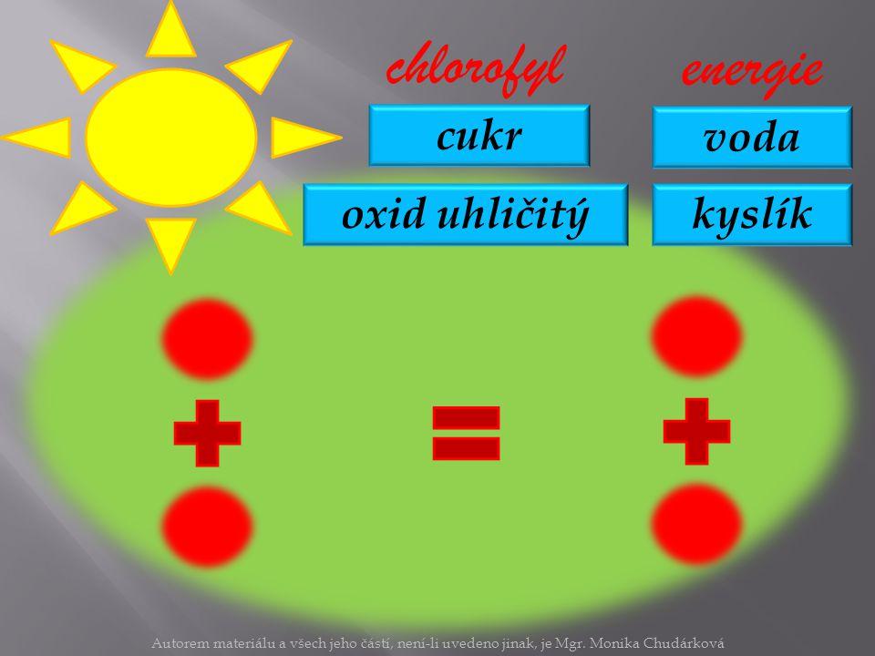 chlorofyl energie cukr voda oxid uhličitý kyslík
