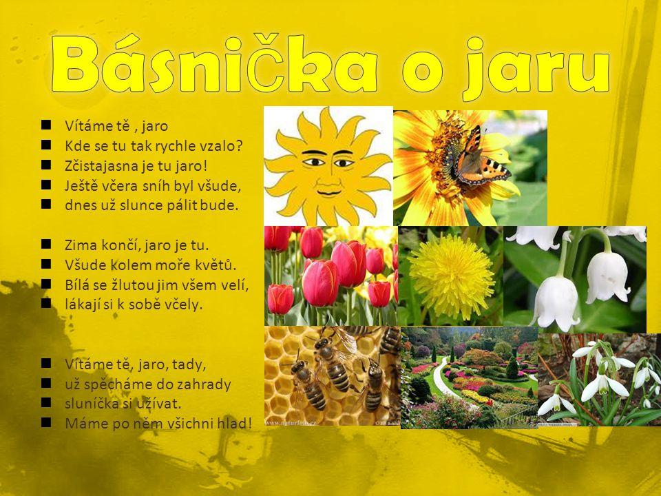 Básnička o jaru Vítáme tě , jaro Kde se tu tak rychle vzalo
