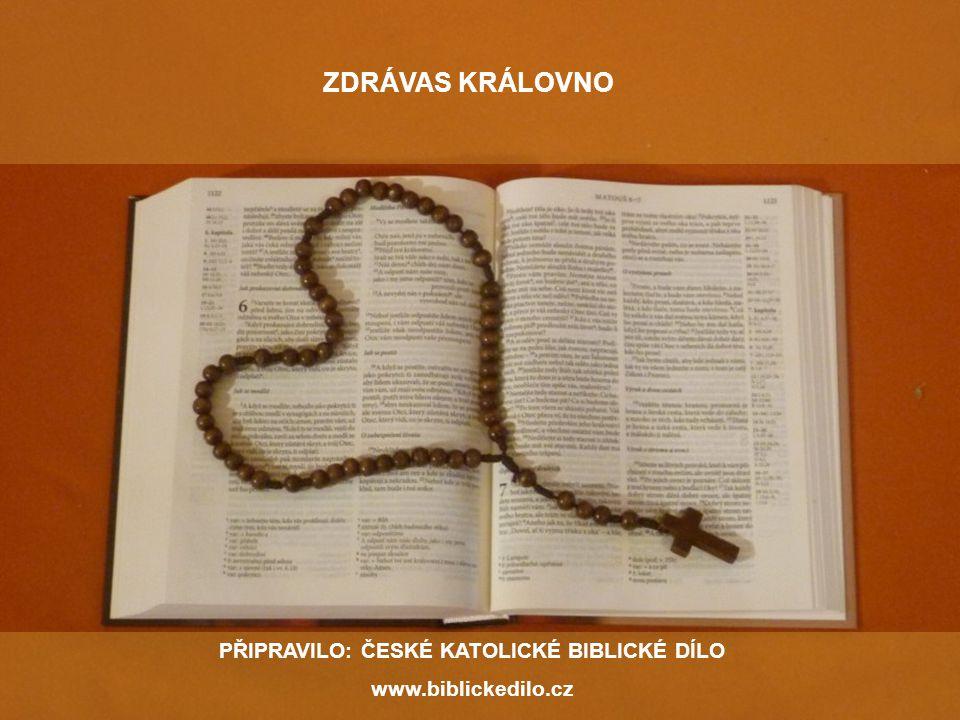 PŘIPRAVILO: ČESKÉ KATOLICKÉ BIBLICKÉ DÍLO