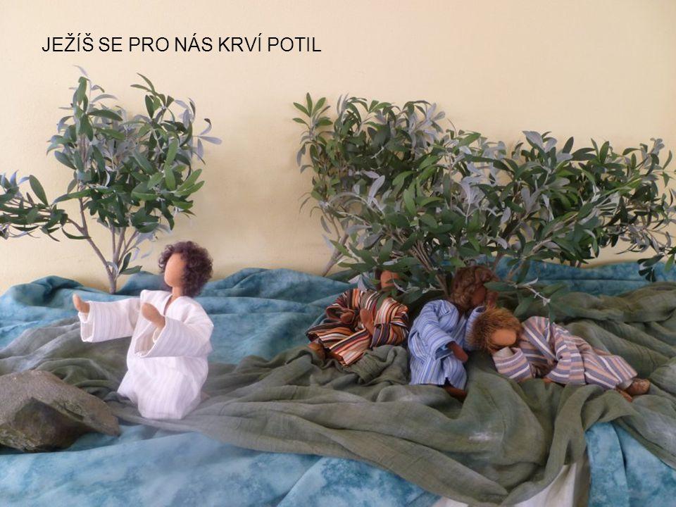 JEŽÍŠ SE PRO NÁS KRVÍ POTIL