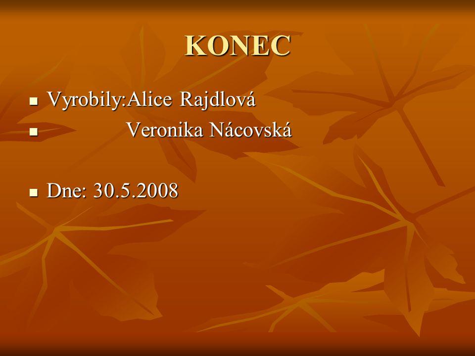 KONEC Vyrobily:Alice Rajdlová Veronika Nácovská Dne: 30.5.2008