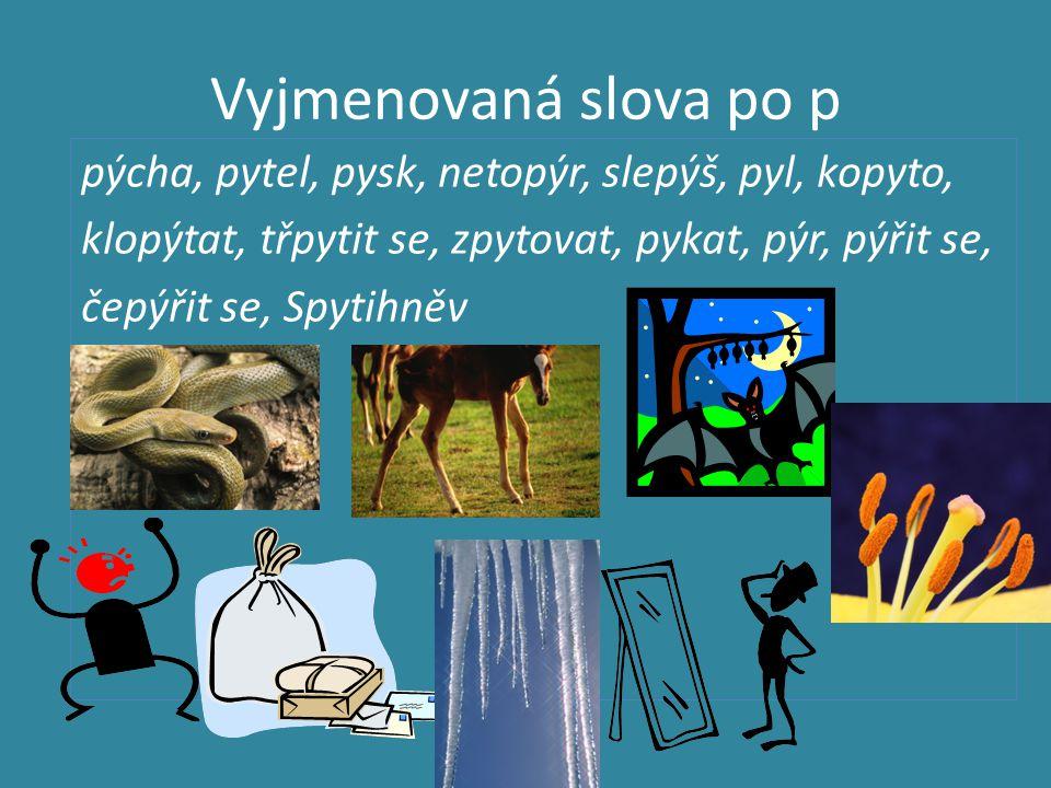 Vyjmenovaná slova po p pýcha, pytel, pysk, netopýr, slepýš, pyl, kopyto, klopýtat, třpytit se, zpytovat, pykat, pýr, pýřit se, čepýřit se, Spytihněv