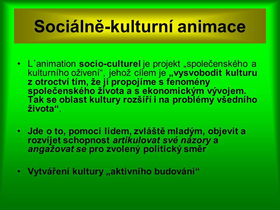 Sociálně-kulturní animace