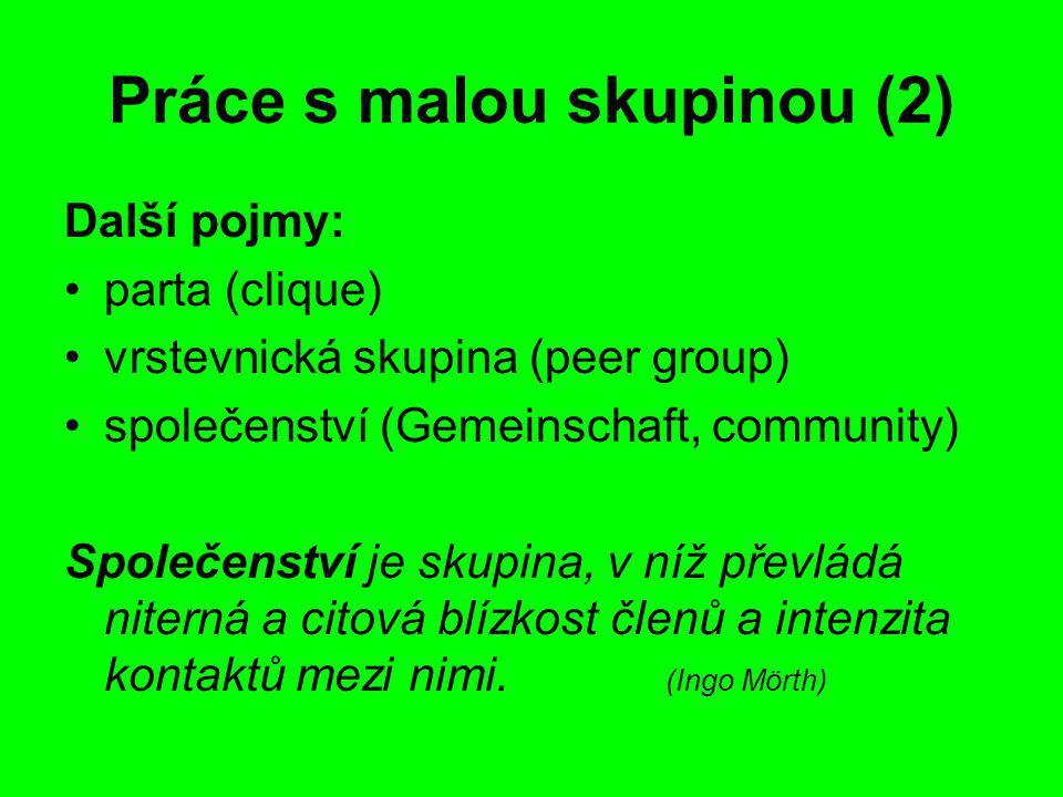 Práce s malou skupinou (2)