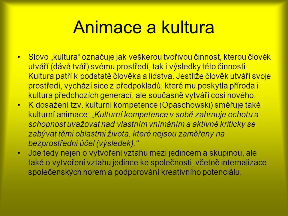 Animace a kultura