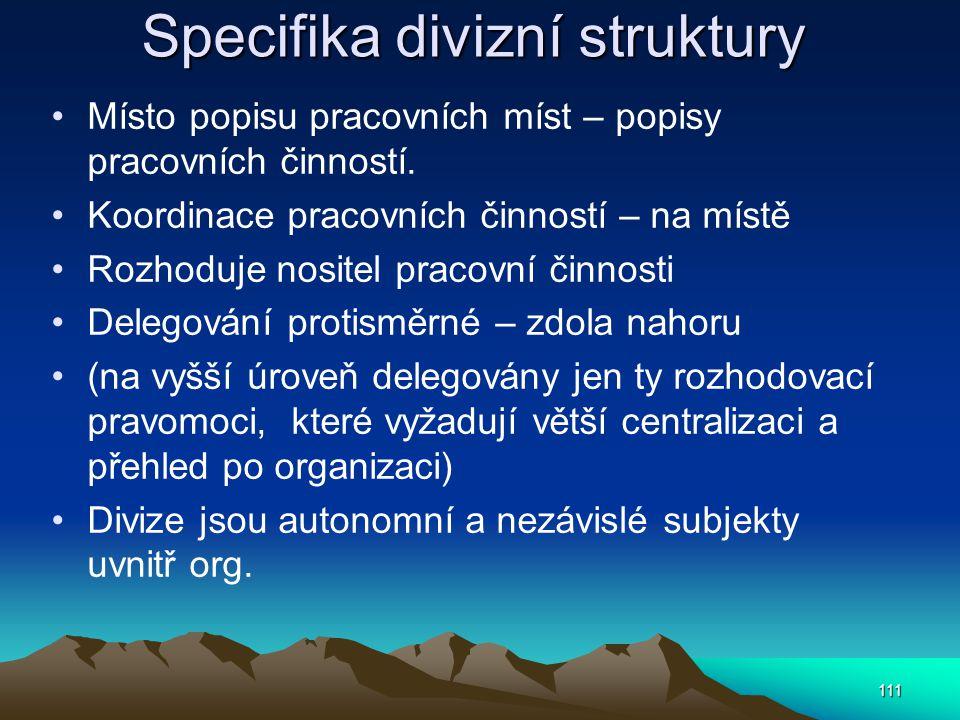 Specifika divizní struktury
