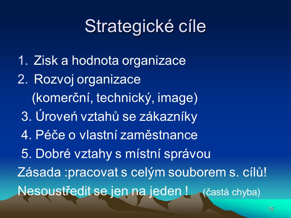 Strategické cíle Zisk a hodnota organizace Rozvoj organizace