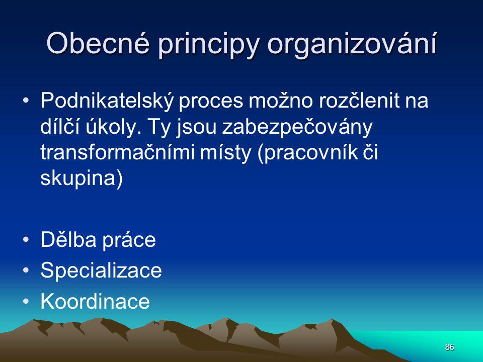 Obecné principy organizování