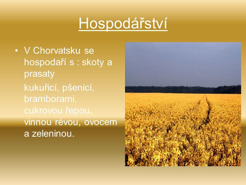 Hospodářství V Chorvatsku se hospodaří s : skoty a prasaty