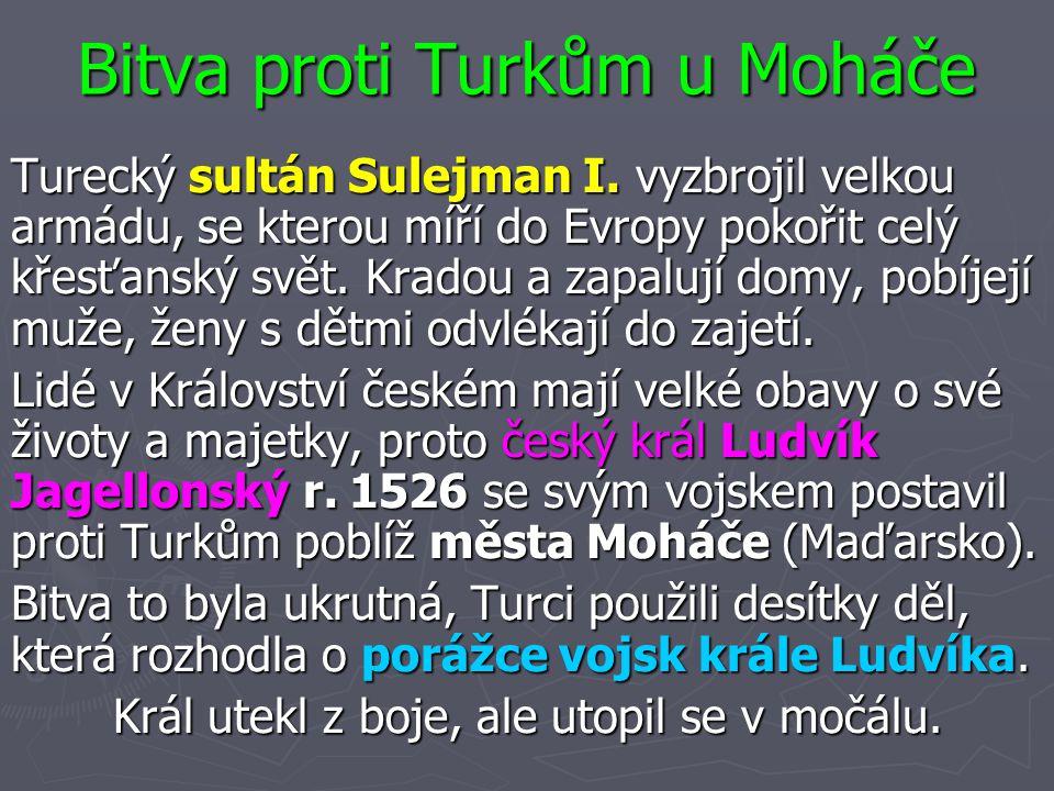 Bitva proti Turkům u Moháče