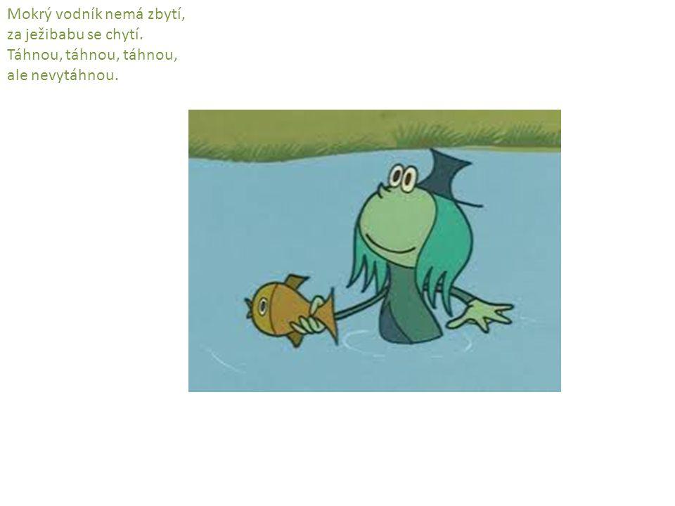 Mokrý vodník nemá zbytí, za ježibabu se chytí