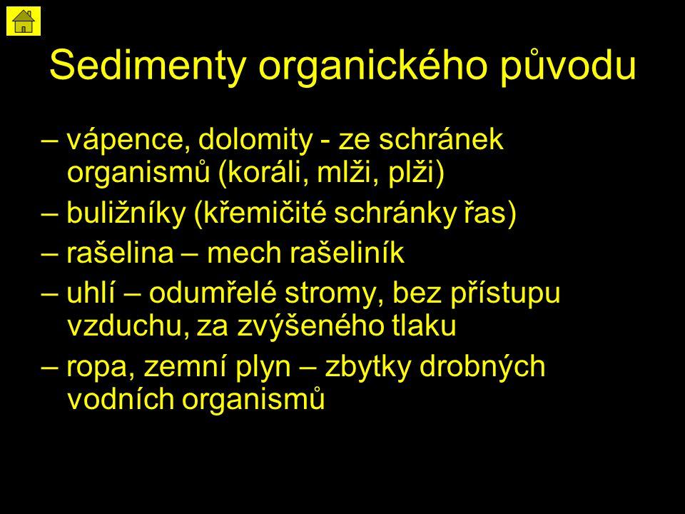 Sedimenty organického původu