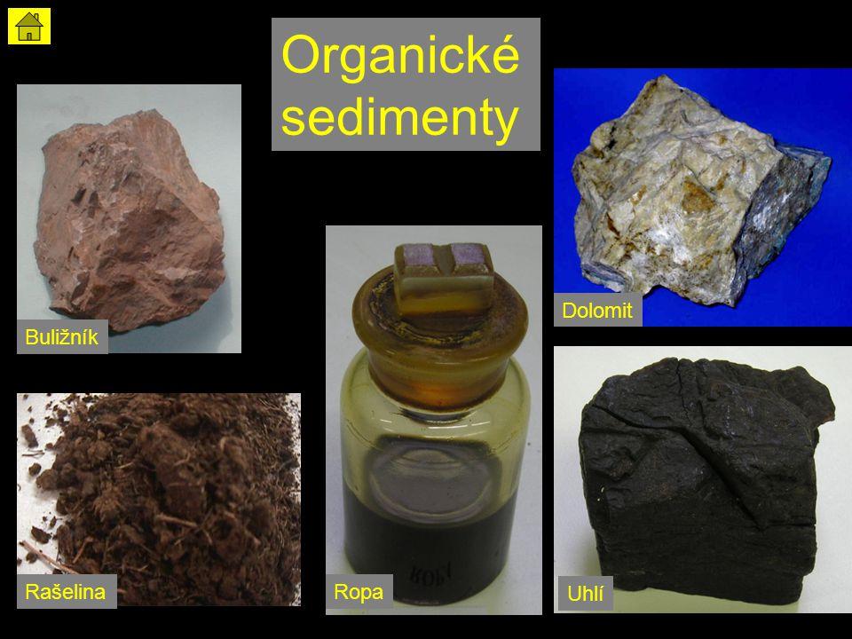 Organické sedimenty Dolomit Buližník Rašelina Ropa Uhlí