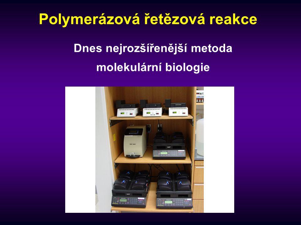 Polymerázová řetězová reakce