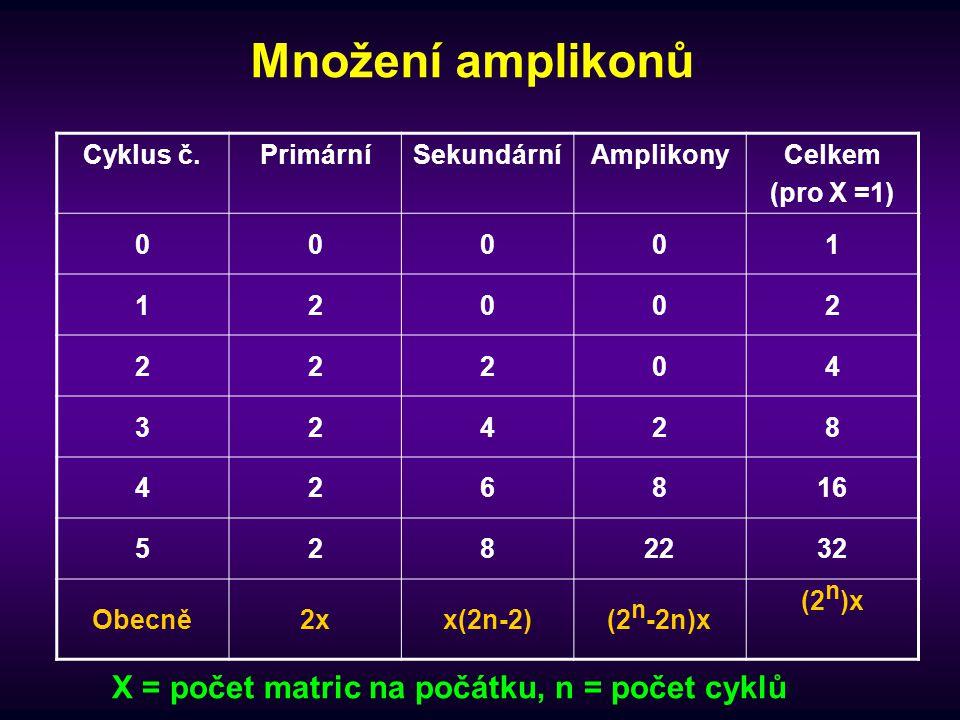 Množení amplikonů X = počet matric na počátku, n = počet cyklů
