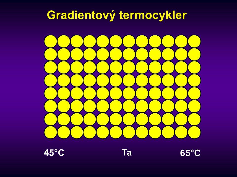 Gradientový termocykler