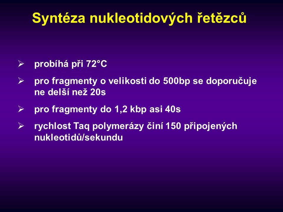 Syntéza nukleotidových řetězců