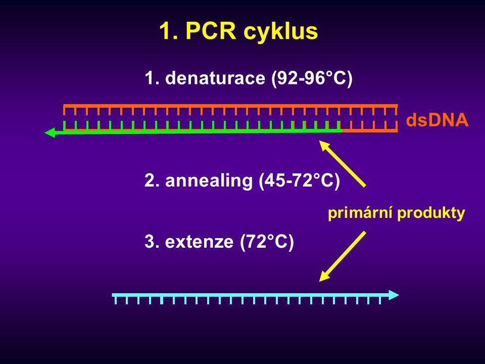1. PCR cyklus 1. denaturace (92-96°C) dsDNA 2. annealing (45-72°C)
