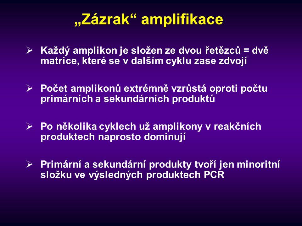 """""""Zázrak amplifikace Každý amplikon je složen ze dvou řetězců = dvě matrice, které se v dalším cyklu zase zdvojí."""