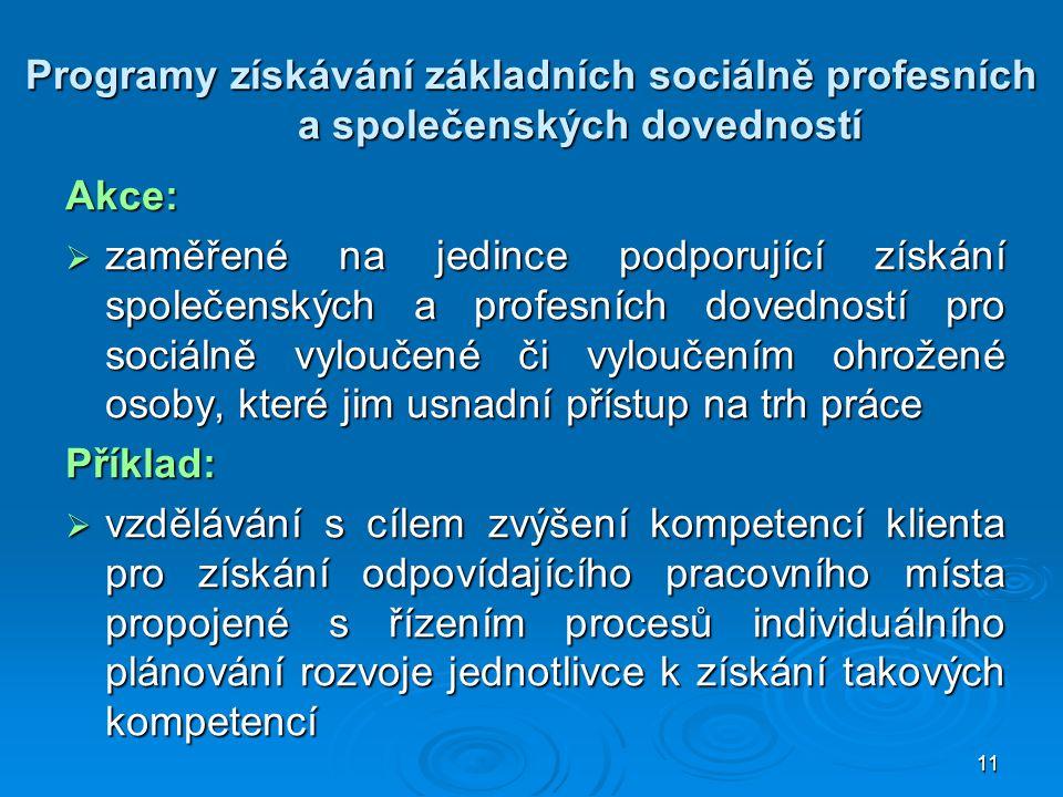 Programy získávání základních sociálně profesních a společenských dovedností