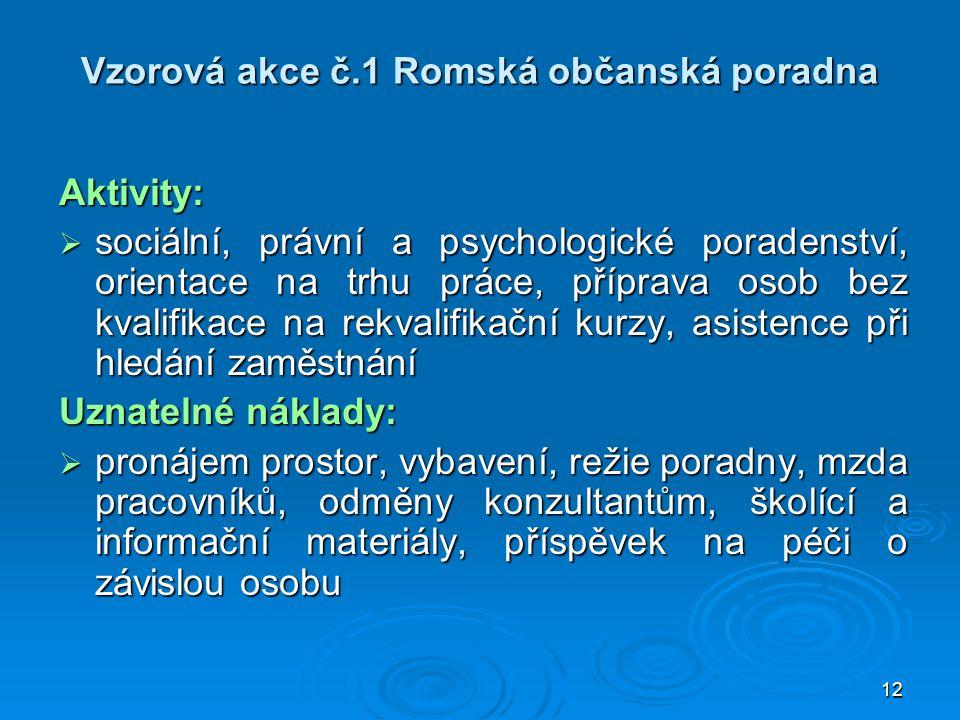 Vzorová akce č.1 Romská občanská poradna