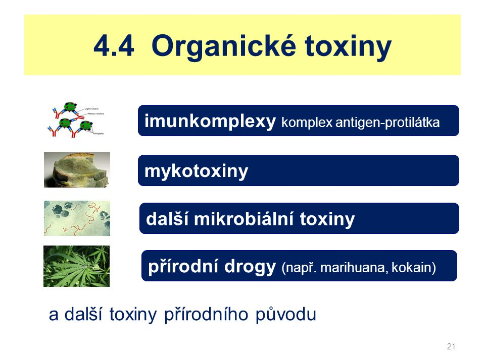 4.4 Organické toxiny imunkomplexy komplex antigen-protilátka
