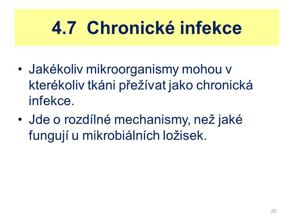 4.7 Chronické infekce Jakékoliv mikroorganismy mohou v kterékoliv tkáni přežívat jako chronická infekce.
