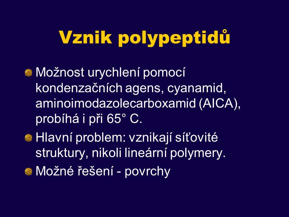 Vznik polypeptidů Možnost urychlení pomocí kondenzačních agens, cyanamid, aminoimodazolecarboxamid (AICA), probíhá i při 65° C.