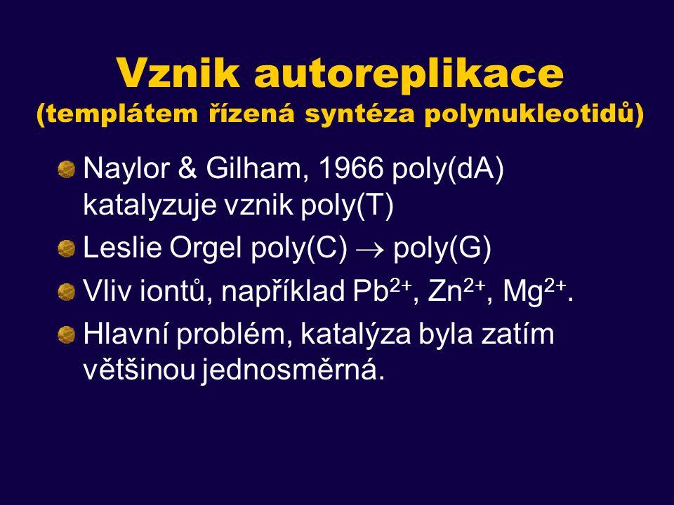 Vznik autoreplikace (templátem řízená syntéza polynukleotidů)