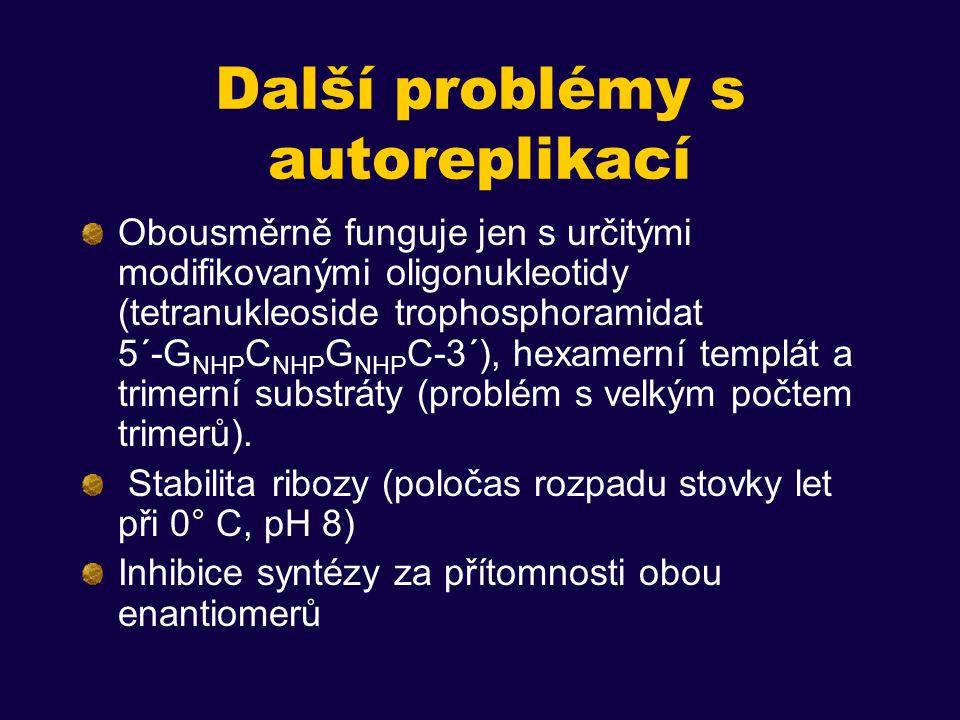 Další problémy s autoreplikací