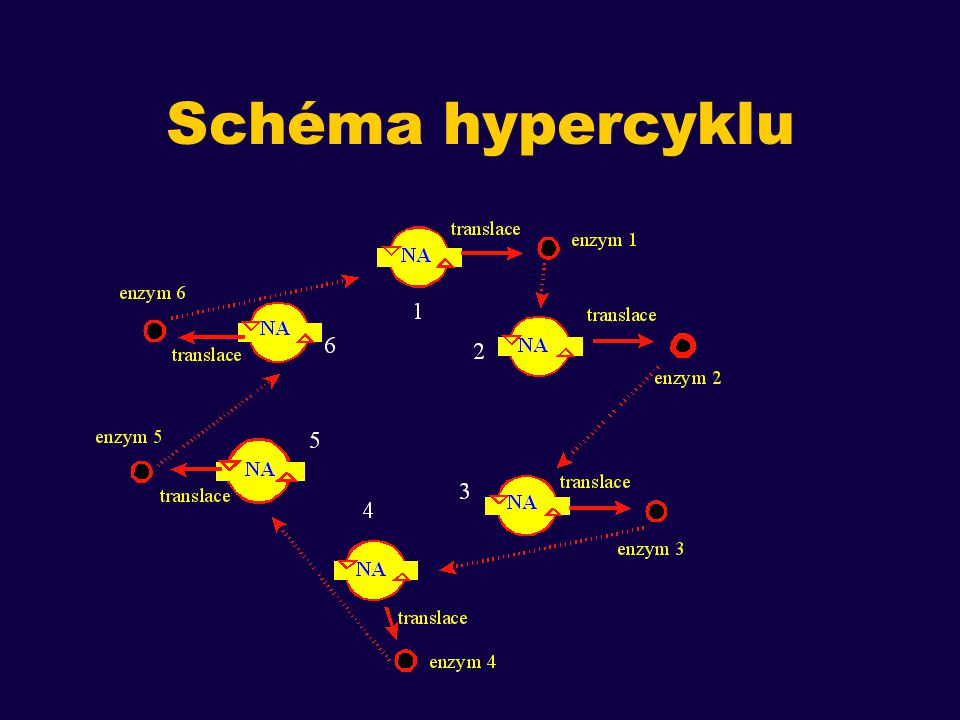 Schéma hypercyklu