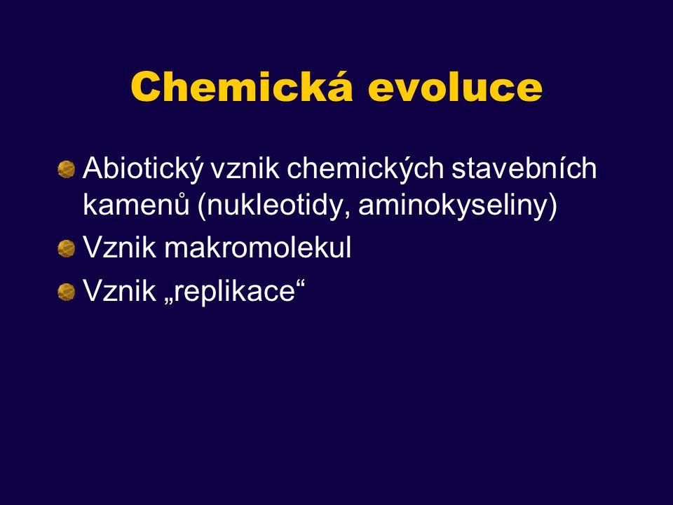 Chemická evoluce Abiotický vznik chemických stavebních kamenů (nukleotidy, aminokyseliny) Vznik makromolekul.