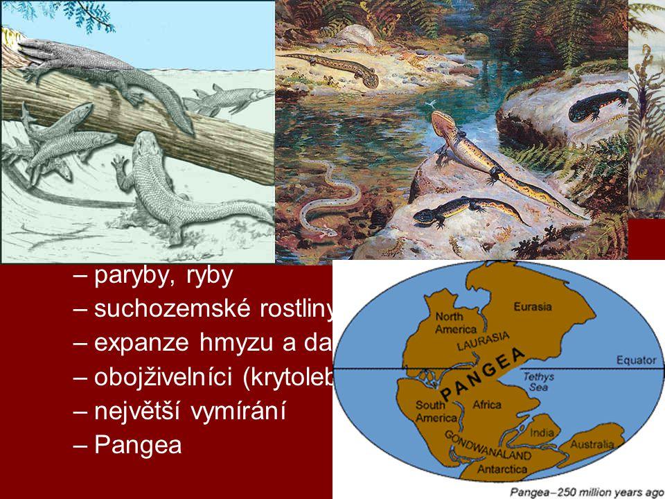 geologická období prvohory (0,5 – 0,25 mld)