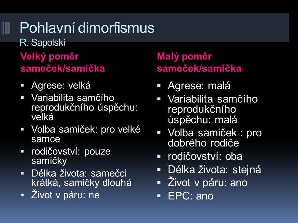 Pohlavní dimorfismus R. Sapolski