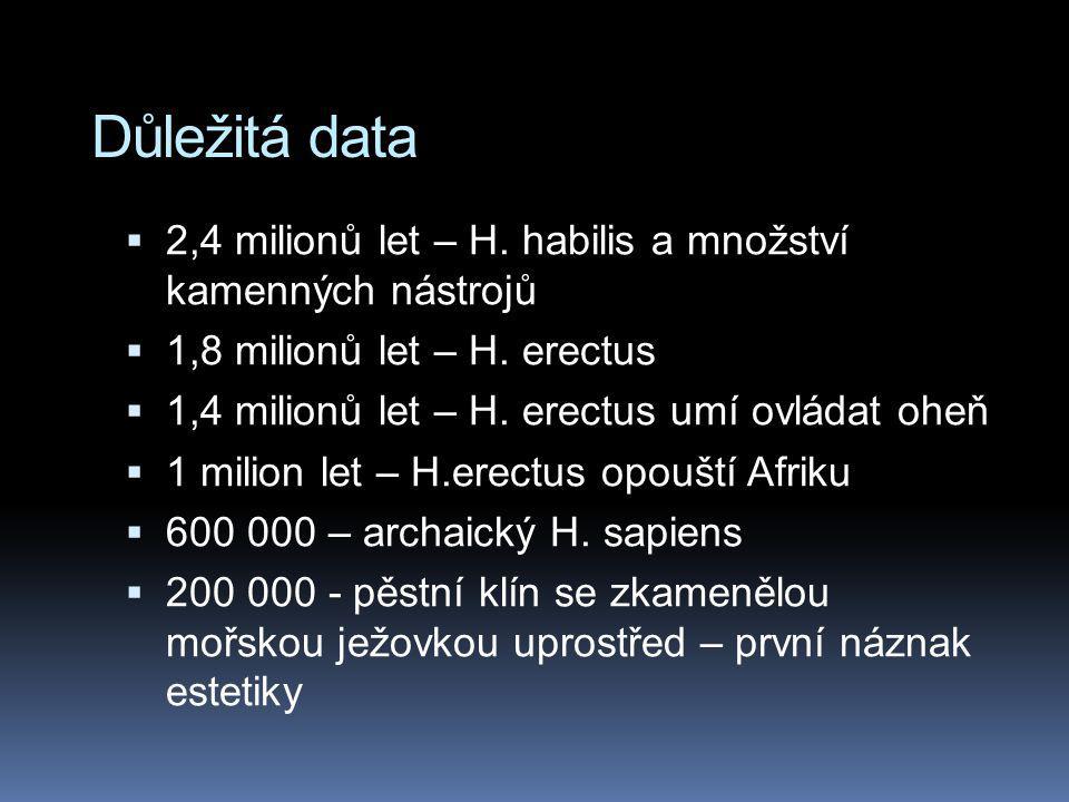 Důležitá data 2,4 milionů let – H. habilis a množství kamenných nástrojů. 1,8 milionů let – H. erectus.
