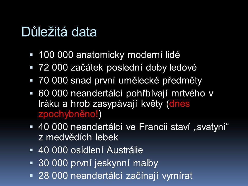 Důležitá data 100 000 anatomicky moderní lidé