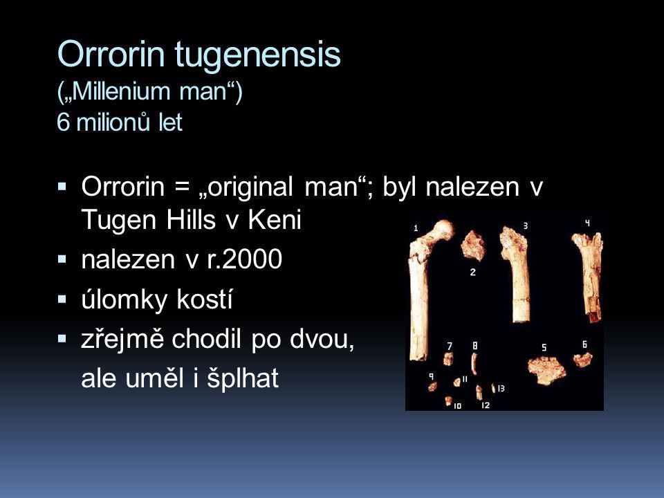 "Orrorin tugenensis (""Millenium man ) 6 milionů let"